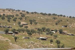Abu Dahouk - Beit Hanina 2