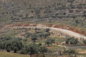 Abu Dahouk - Beit Hanina 1